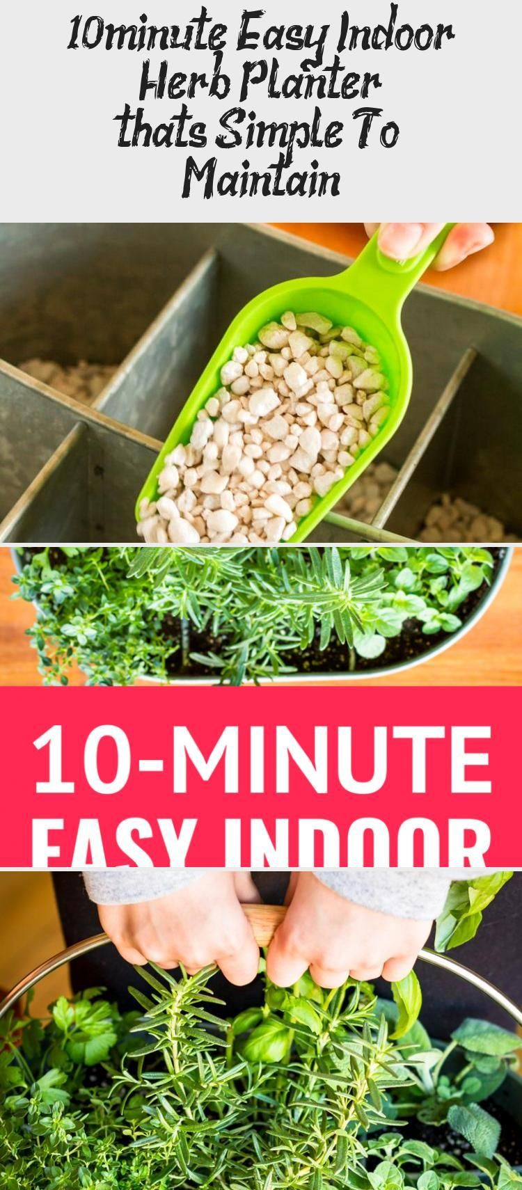 10 Minute Easy Indoor Herb Planter That's Simple To 640 x 480