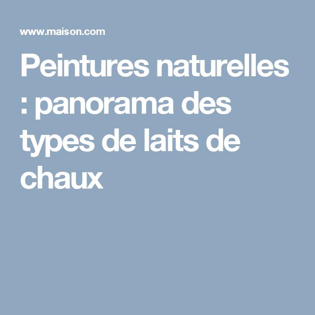 Peintures Naturelles : Panorama Des Types De Laits De Chaux