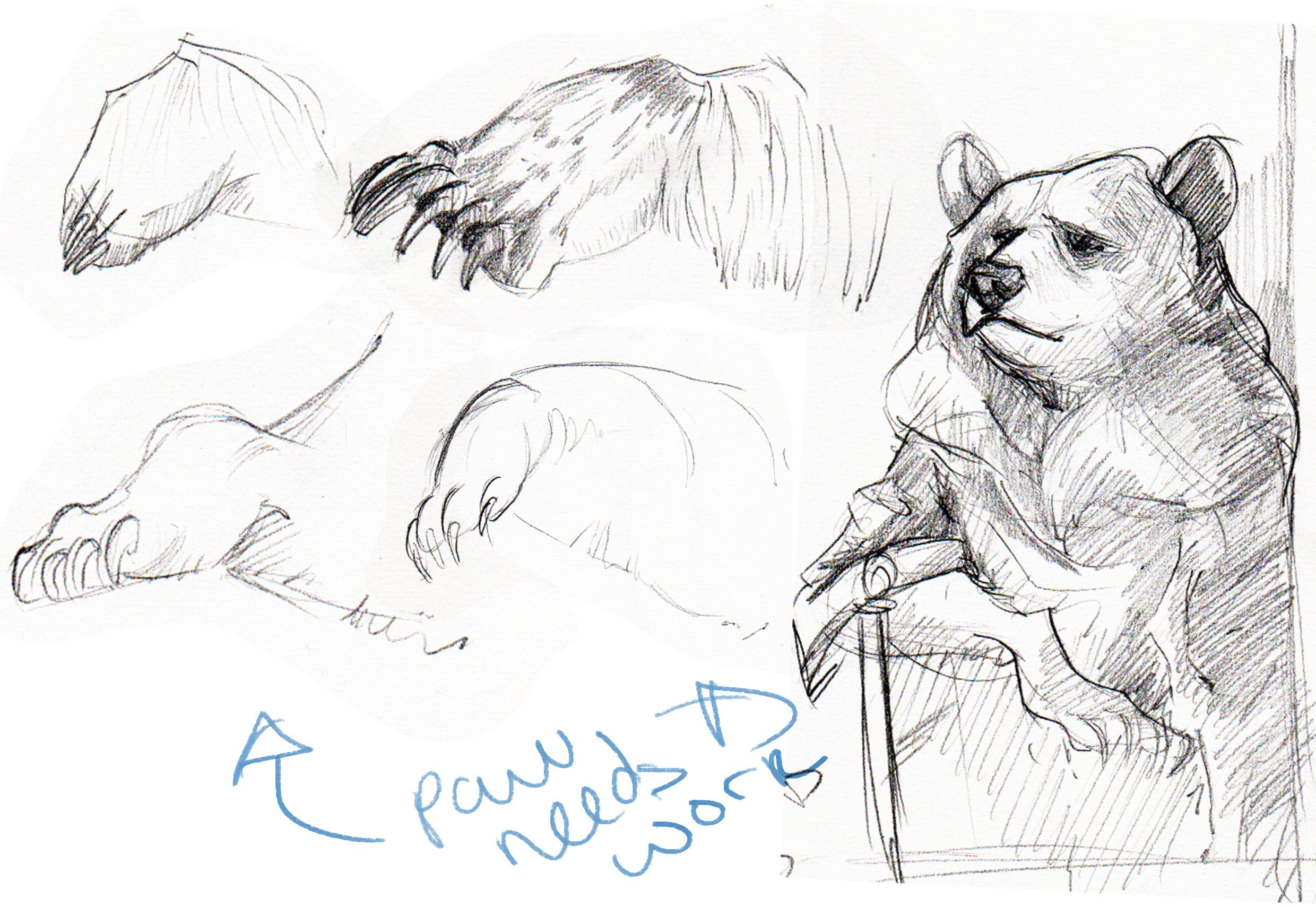 did a quick study of the final piece, but wanted to work on the paw a bit more.