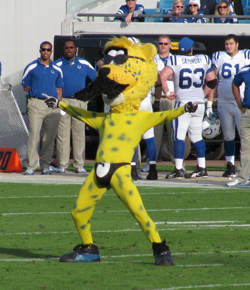 Jacksonville Jaguars Mascot Loses Bet Tries - image 6