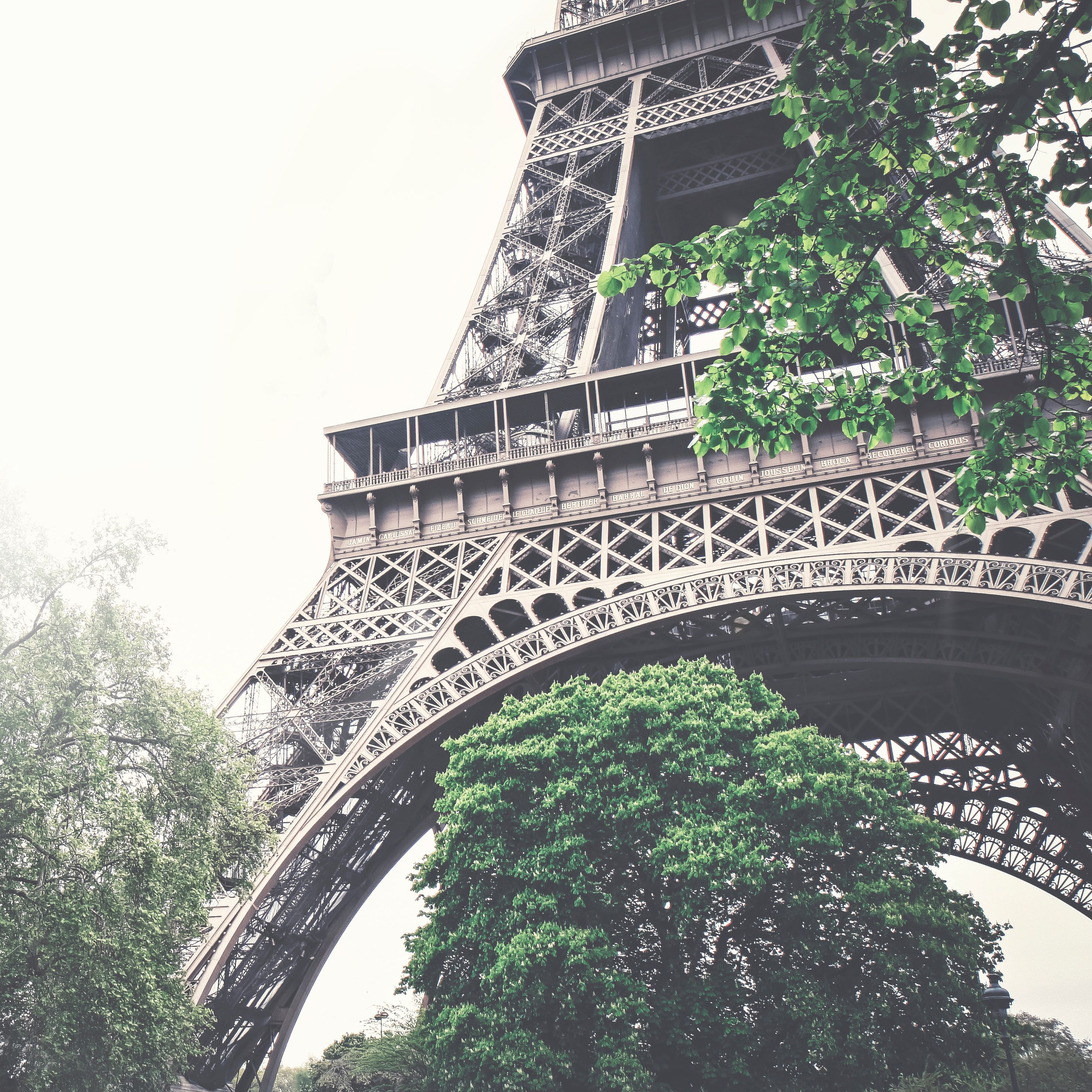 The Eiffel Tower in spring EiffelTower Paris Spring
