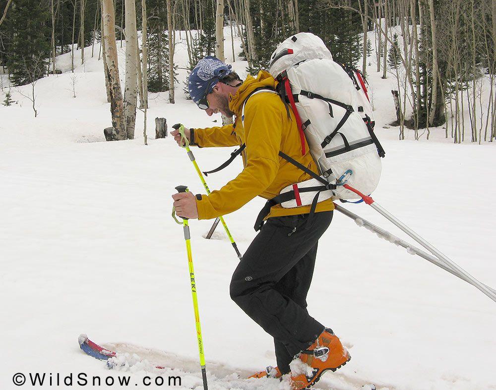 Backcountry skiing pulk  | Pulk's & Snowshoeing | Skiing