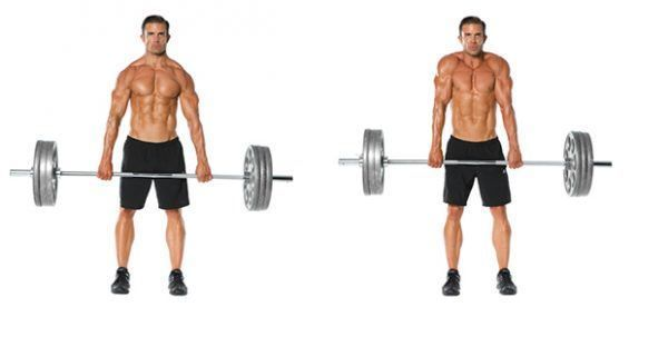 Add Mass And Definition To Your Traps With These 7 Exercises #trapsworkout Add Mass And Definition To Your Traps With These 7 Exercises - GymGuider.com #trapsworkout Add Mass And Definition To Your Traps With These 7 Exercises #trapsworkout Add Mass And Definition To Your Traps With These 7 Exercises - GymGuider.com #trapsworkout