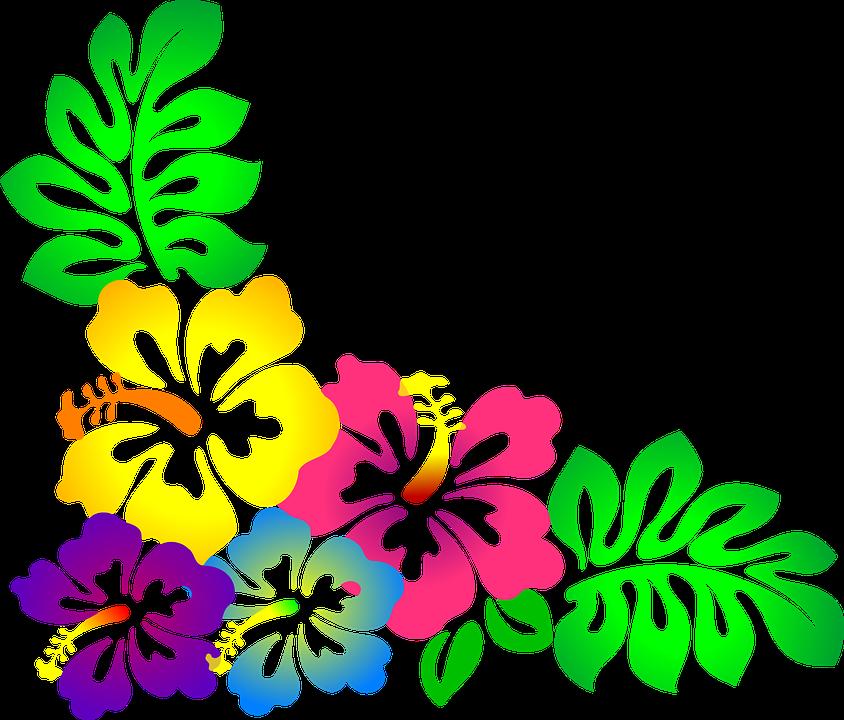 hawaiian luau hawaiian flowers hawaiian quilts hibiscus flowers flower clipart havaianas