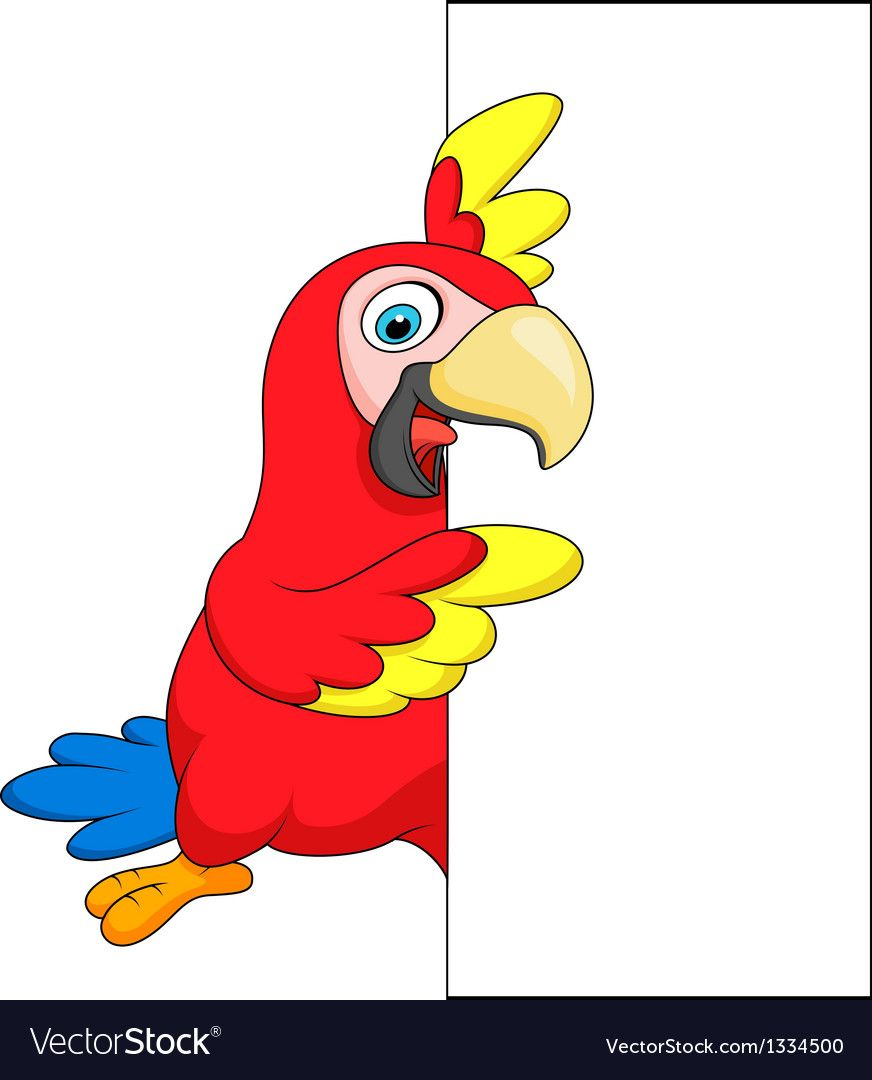 Vector Illustration Of Macaw Bird Cartoon With Blank Sign Download A Free Preview Or High Quality Adobe Illustrator Ai Eps Pd In 2021 Blank Sign Cartoon Vector Free