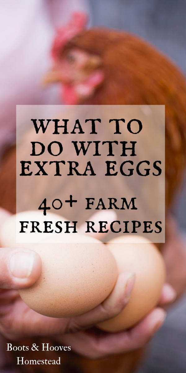 40+ Healthy Egg Recipes
