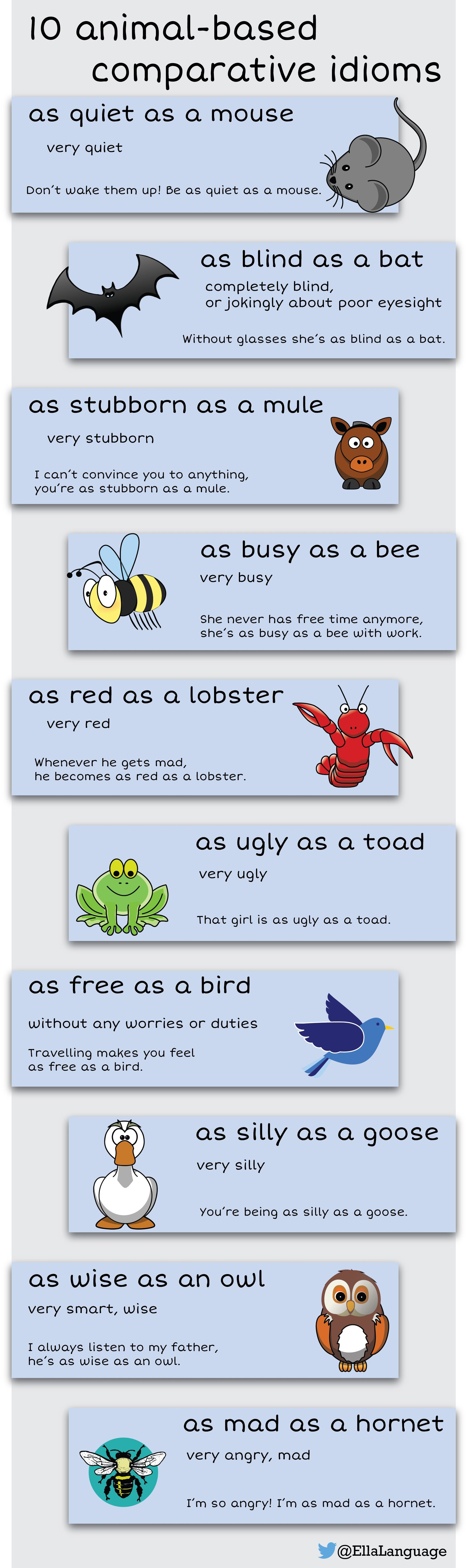 10 Comparative Idioms Animals Idioms Esl English