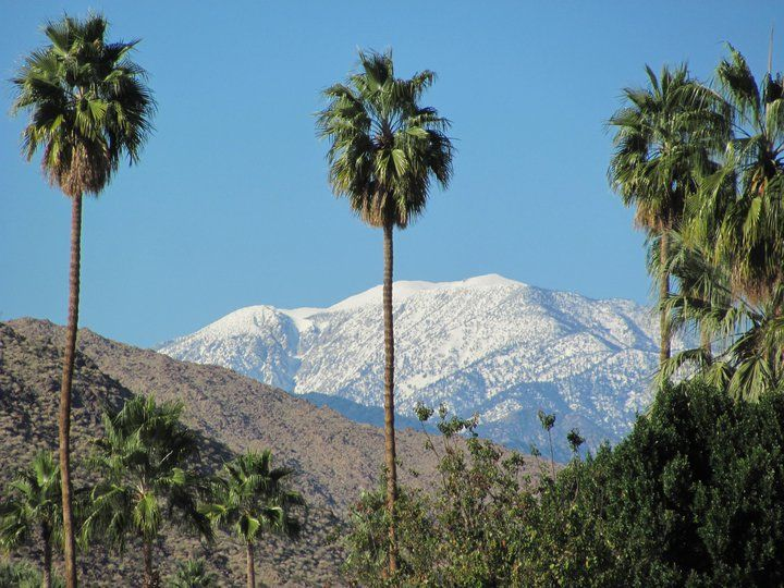 Why I love Palm Springs in the winter | Palm springs ...