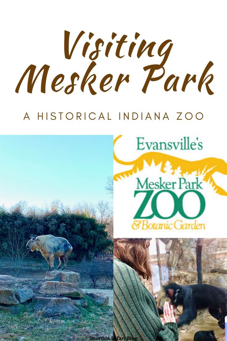 Visiting Mesker Park A Historical Indiana Zoo in 2020