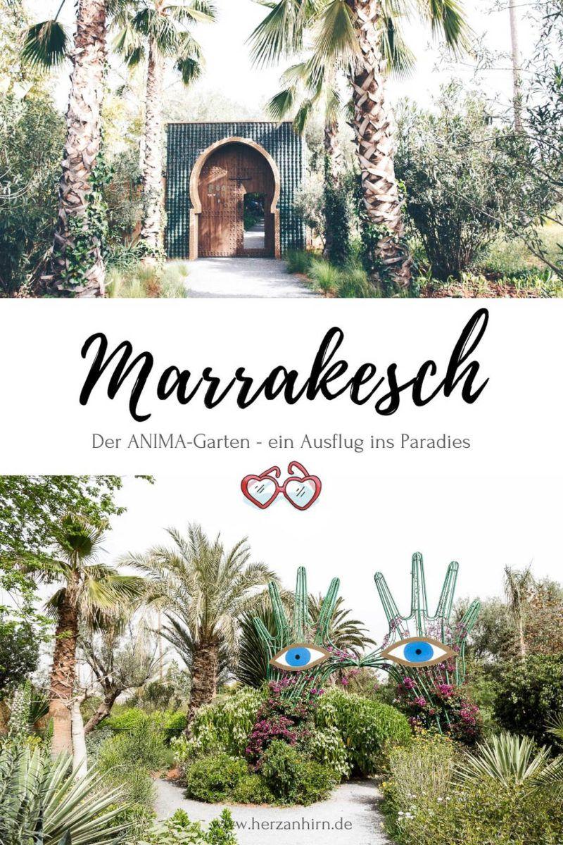 Geheimtipp Marrakesch Der Anima Garten Ein Ausflug Ins Paradies In 2020 Marrakesch Ausflug Reisen