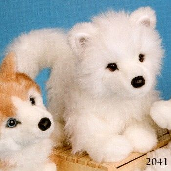 Samoyed Puppies Pictures Puppies Pictures Online Samoyed Puppy Puppies Samoyed