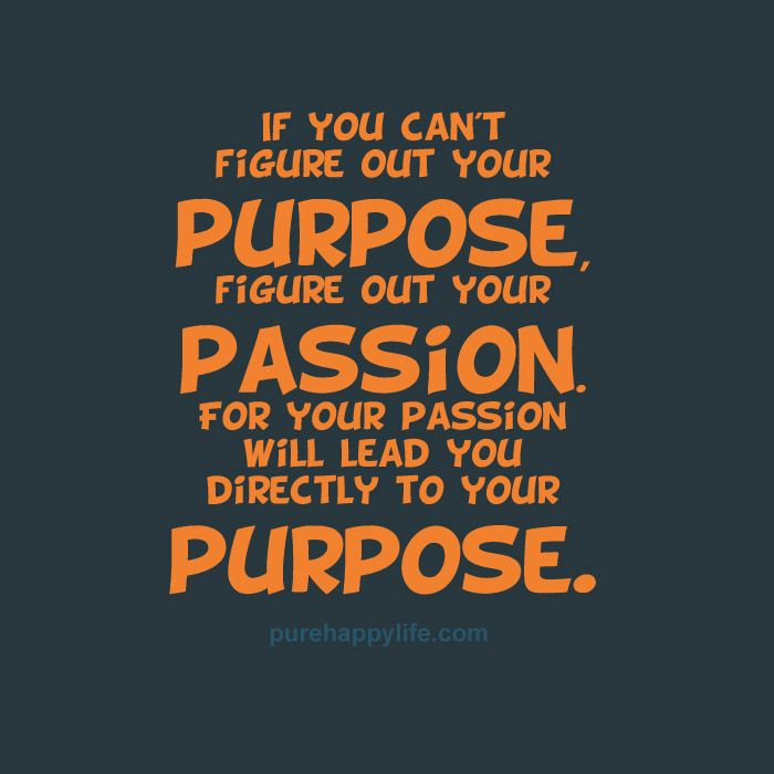 Purpose Quotes If You Can't Figure Out Your Purpose Figure Out Your Passionfor .