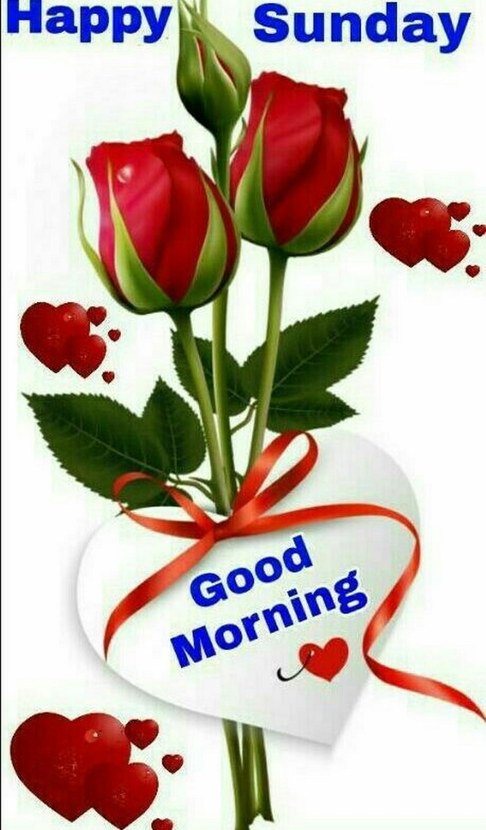 Good Morning Friend S Have A Happy Sunday Krishna Roy Google