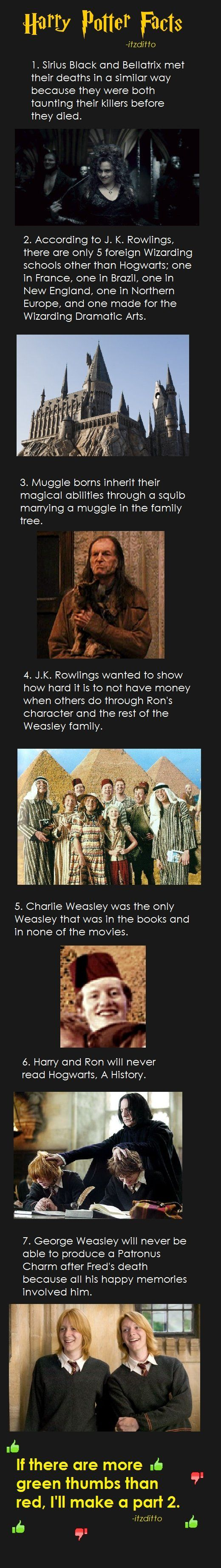 Harry Potter Facts Part 1 For Those Looking Harry Potter Fakten Harry Potter Harry Potter Bilder