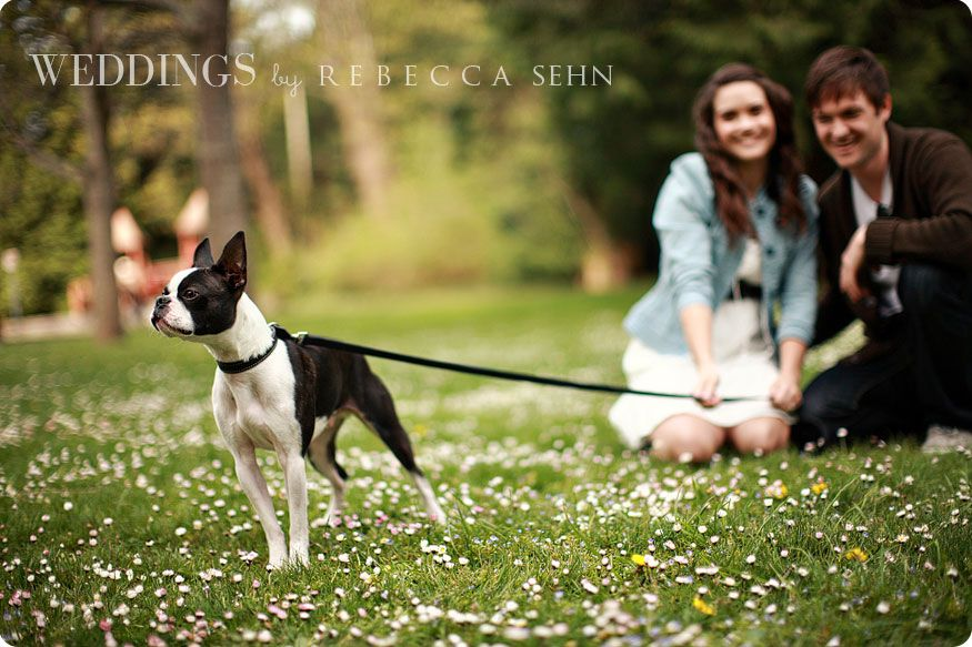 Photoshoot With Dog Wedding Pictures Engagement Pictures Fun
