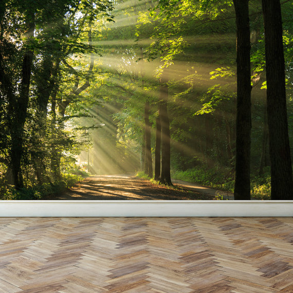 Wall Mural Shining Through The Forest Trees, Peel And Stick Repositionable  Fabric Wallpaper For Interior