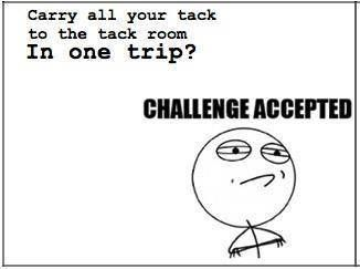 Pretty sure I try this all of the time! But I always get stuck at the door into the tack room! Gah #horsepeopleproblems