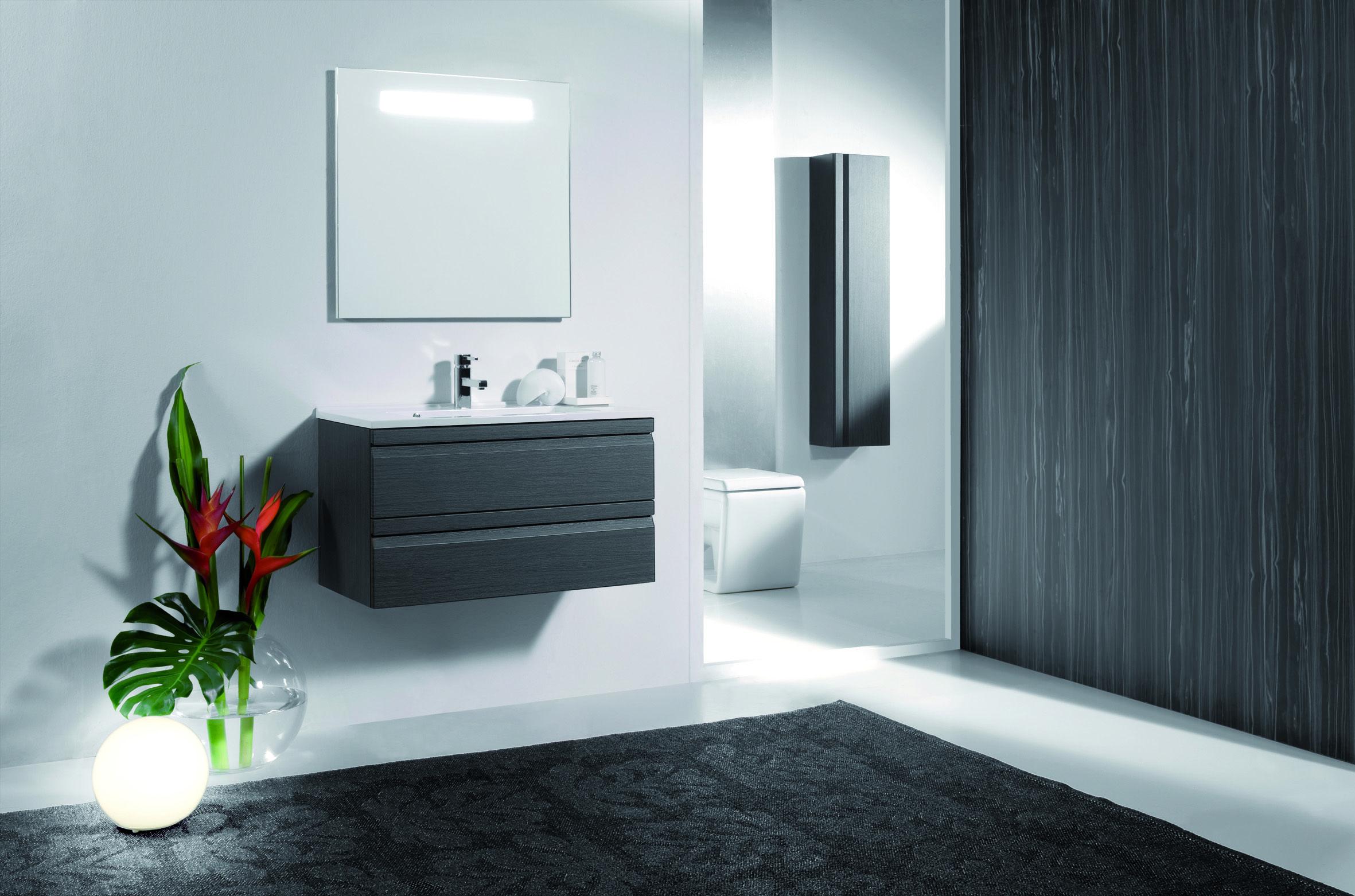 Maak optimaal gebruik van je badkamer. Sobere design look met ...