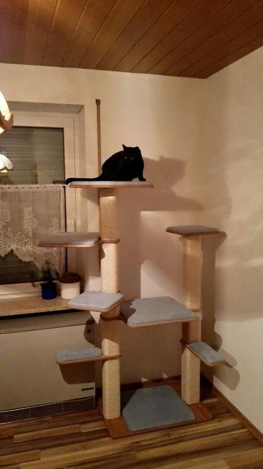 CATHOME Kratzbaum hellblau mit süßer Katze
