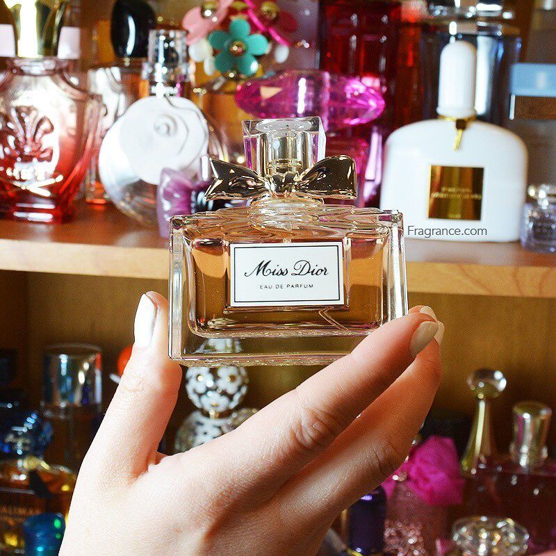 "99fcd787d9d4ea Miss Dior Perfume ( fragrancenet) on Instagram  ""We all have that one  perfume that makes us feel beautiful. What s yours  Click the link in our  bio…"""