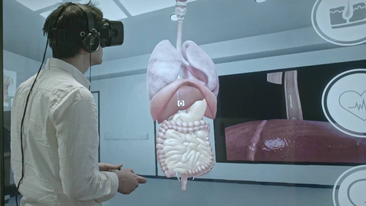 Human Dissection Game Human Anatomy Pictures Virtual Reality
