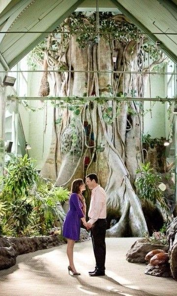 This Philadelphia Zoo Engagement Session Is Such A Fun Idea Look At That Monstrous Tree