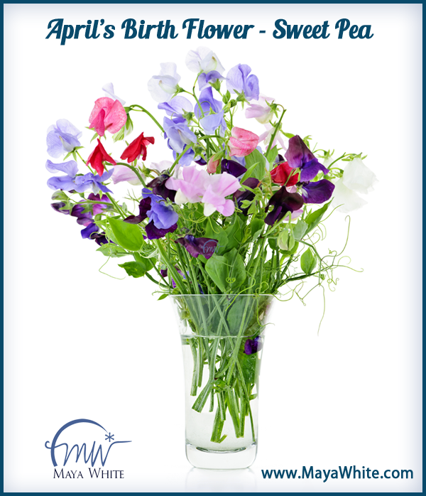 April actually has 2 birth flowers, the Sweet Pea and the
