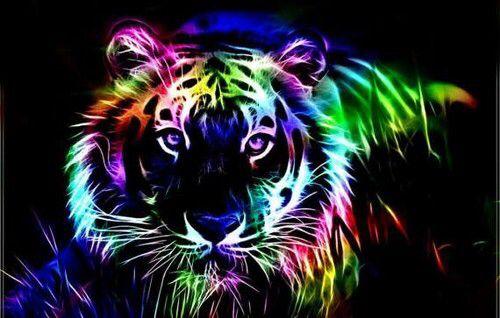 Bright Colors Photo Neon Big Cat Animal Wallpaper Animals Cute Animal Drawings