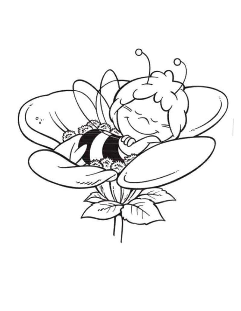 Maya The Bee Sleeping On A Flower Coloring Page Dyr Pinterest