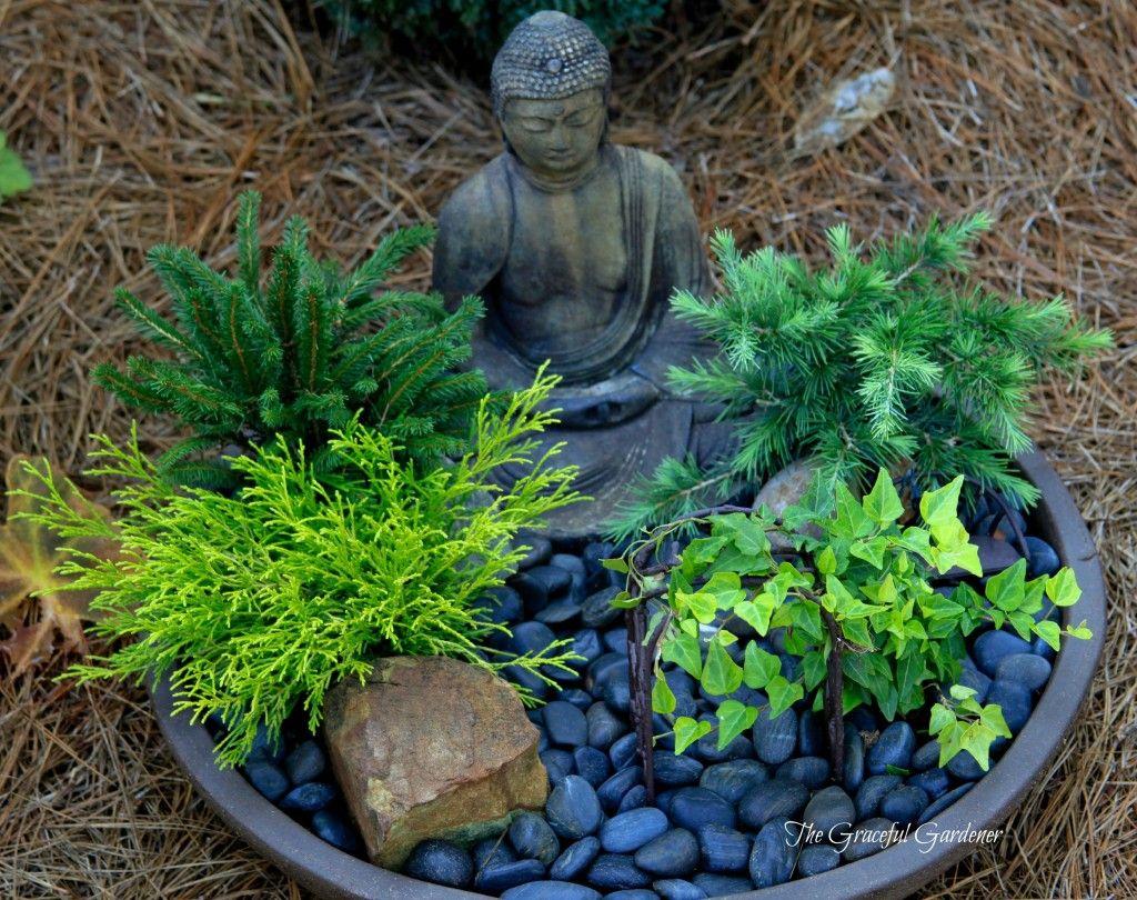 Summertime In My Garden The Graceful Gardener S Containers 2013 Mini Zen Garden Meditation Garden Buddha Garden