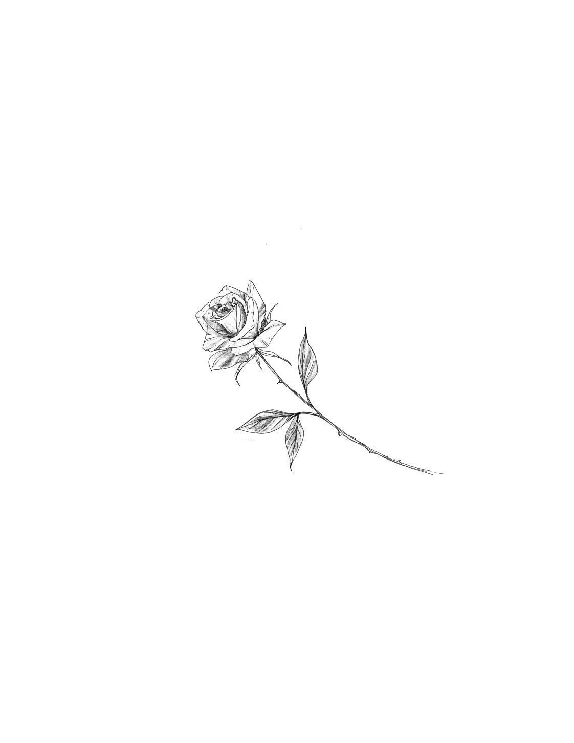 Photo of Rose Tattoo Design – Made by my tattoo artist Kelly! #tattoos …