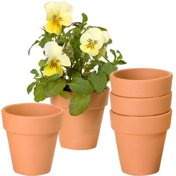 Bulk Mini Terra Cotta Clay Pots 3 Ct Packs At Dollartree Com Clay Pots Clay Pot Crafts Terracotta