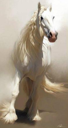 .gorgeous white horse!