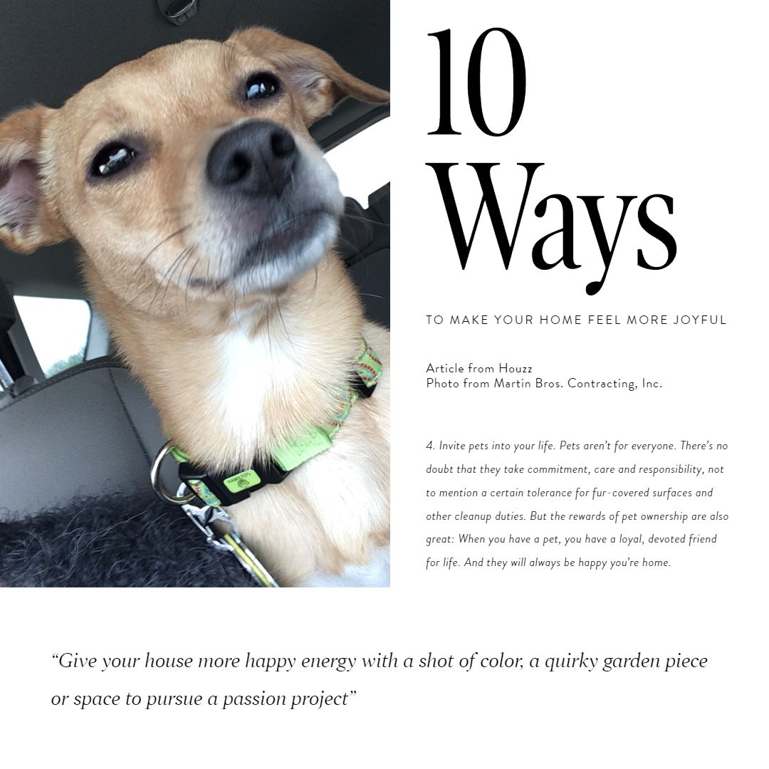 10 Ways To Make Your Home Feel More Joyful 4 Invite Pets Into Your Life Pets Aren T For Everyone The Rewards Of Pet Owne Feelings Greatful Pet Ownership