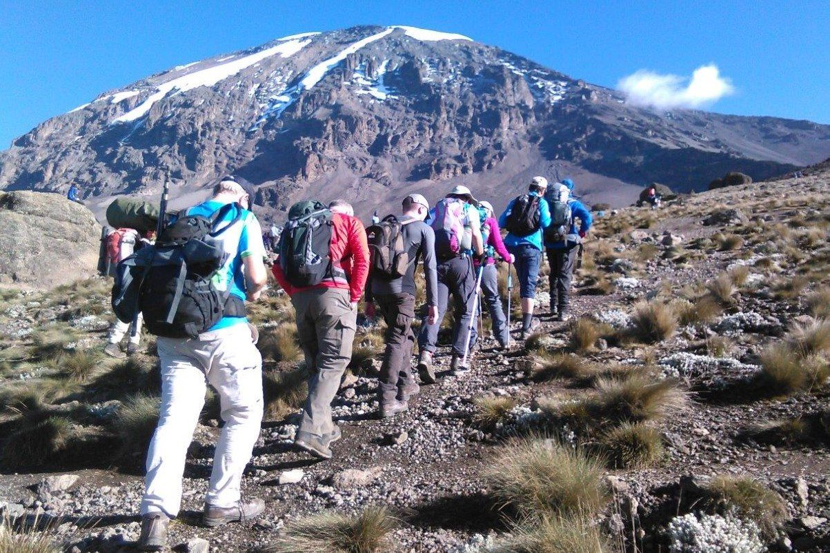 Image result for kilimanjaro climbing safari