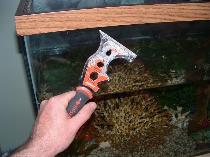 How To Replace The Top Frame Of An Aquarium 66920 Aquarium Saltwater Fish Tanks Frame