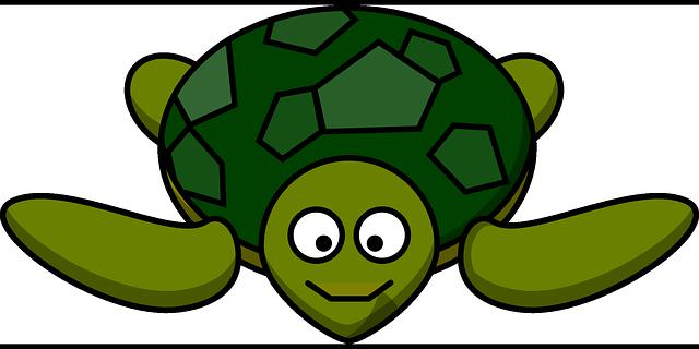 Gallery For Clipart Sea Turtle Cartoon Turtle Green Sea Turtle Turtle