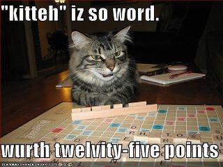 Love this kitteh!