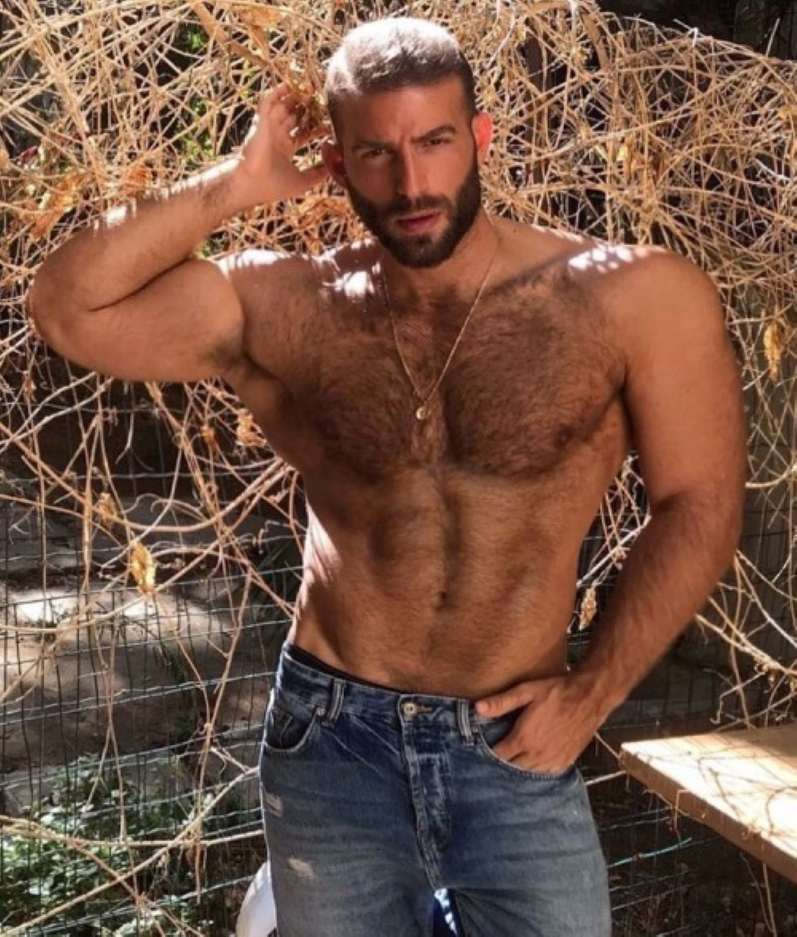 Pin by 胡勤 on 1 Western Muscle in 2020 | Hairy chested men