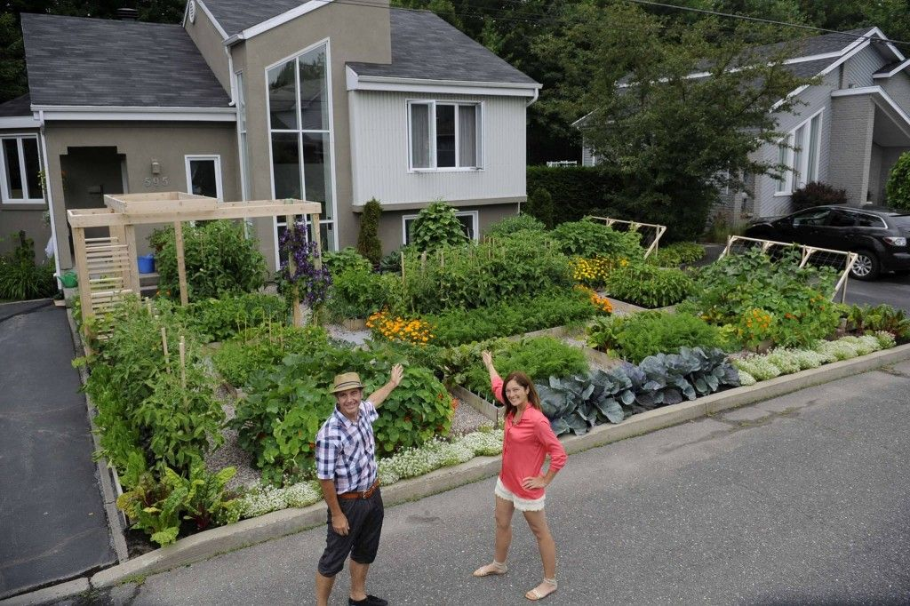 Beautiful Vegetable Gardens In The Front Yard Of House Garden