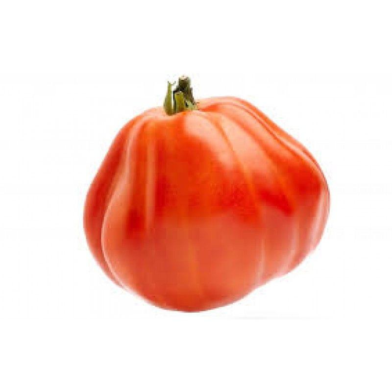 Cultivando Tomate Corazón De Bou Cultivar Tomates Tomate Cultivar