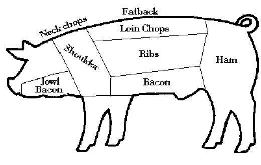 Butcher a Pig Diagram | Bacon