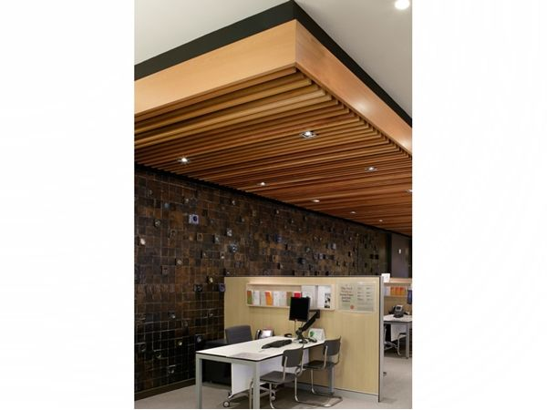 Architectural-Linear-Timber-and-Acoustic-Panels-from-Screenwood-410563-xl.jpg (600×450)