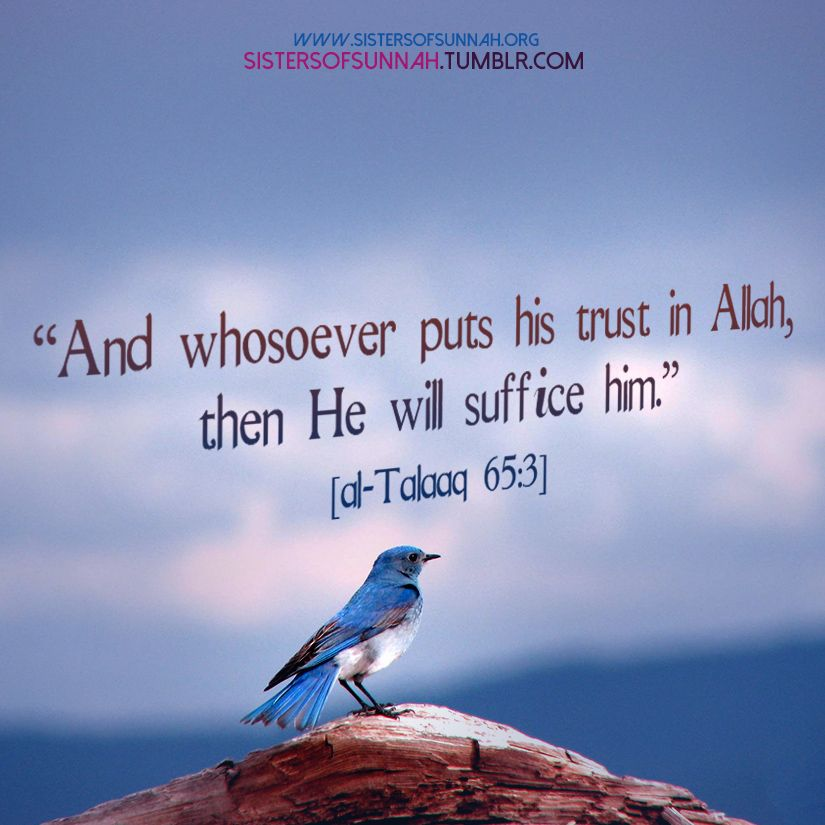 Trust In Islam Quotes: Put Your Trust In Allah (swt). Sponsor A Poor Child Learn