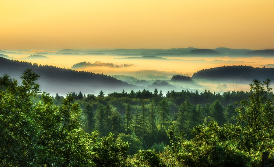 ***Misty summer morning (Czech Republic) by Marek Boguszak - 500px
