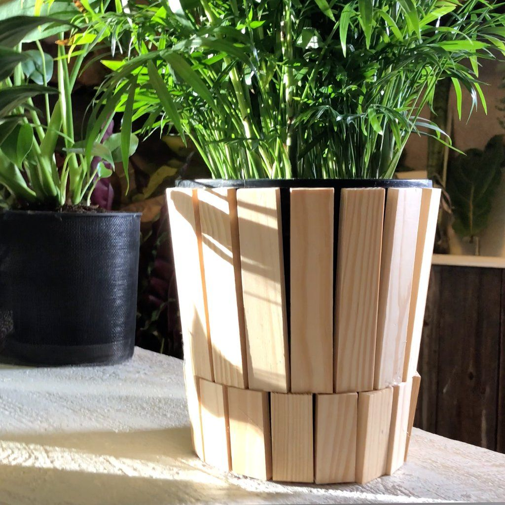 Pin On Plant Style