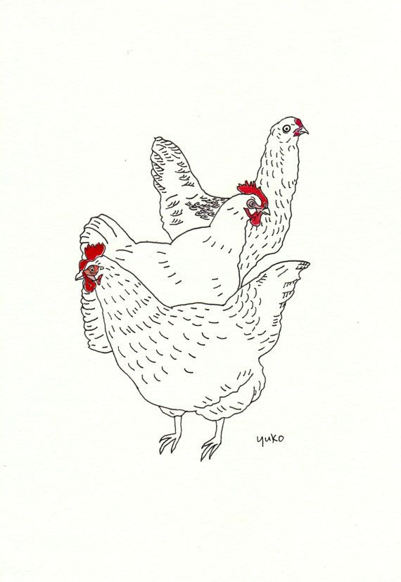 Line Drawing Chicken : Urban chickens line drawing print fine art
