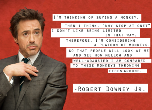 Q9emk Png 500 362 Celebrity Quotes Funny Robert Downey Jr Quotes Robert Downey Jr