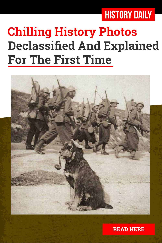Chilling Photos From History Explained | History photos, Photo, History