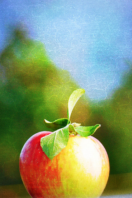 Apple - between a Red Delicious and Golden.